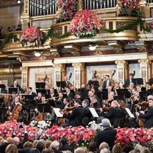 べルリン・フィルとウィーン・フィル年末特別演奏会を聴く ベルリン・ウィーン 7日間